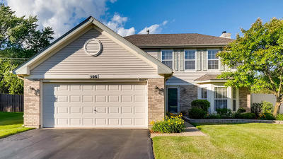 Streamwood Single Family Home For Sale: 508 Maple Drive