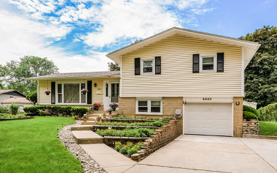 Downers Grove Single Family Home For Sale: 6560 Fairmount Avenue