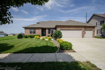 Bourbonnais Single Family Home For Sale: 2003 Old Brick Road