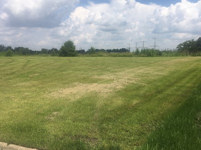 Homer Glen Residential Lots & Land For Sale: 16035 Ridgewood Drive