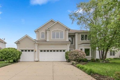 Naperville Single Family Home For Sale: 5035 Prairie Sage Lane