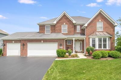Plainfield Single Family Home For Sale: 12407 Kilkenny Drive