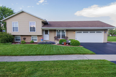 Frankfort Single Family Home Contingent: 8125 W Norwood Drive