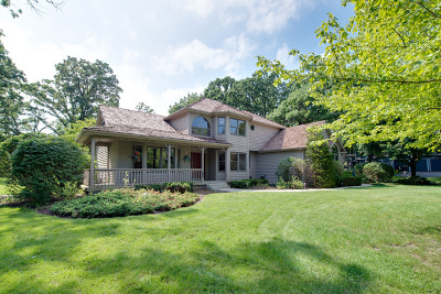 Antioch Single Family Home For Sale: 782 Hanley Drive