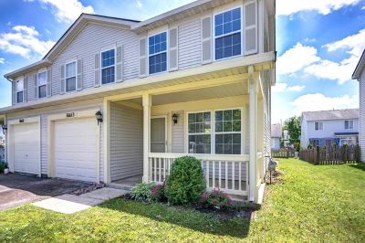 Lockport Condo/Townhouse For Sale: 16613 West Natoma Drive