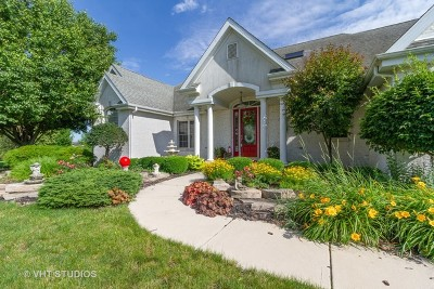 Bourbonnais Single Family Home For Sale: 1046 Auquin