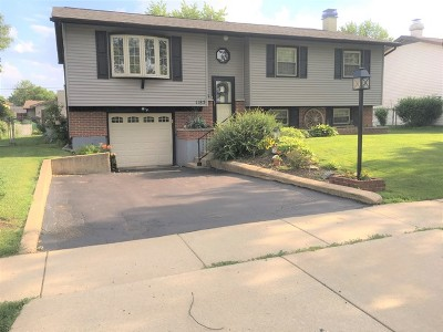 Hanover Park Single Family Home For Sale: 1185 Old Mill Lane