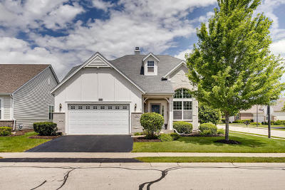 Naperville Single Family Home For Sale: 2903 Raleigh Court