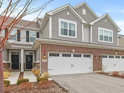 Lockport Condo/Townhouse For Sale: 16122 West Coneflower Drive