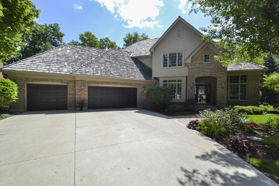 Mundelein Single Family Home For Sale: 28621 Champions Court