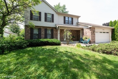 Darien Single Family Home For Sale: 3456 Drover Lane