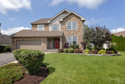 McHenry Single Family Home For Sale: 1921 Olde Mill Lane
