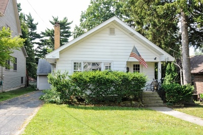 Glen Ellyn Single Family Home For Sale: 361 Anthony Street
