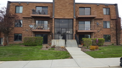 Schaumburg Condo/Townhouse For Sale: 701 Limerick Lane #3D