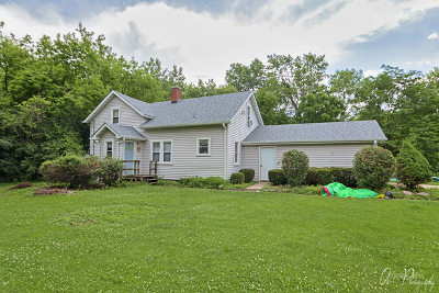 Antioch Single Family Home For Sale: 40457 North Il Route 59