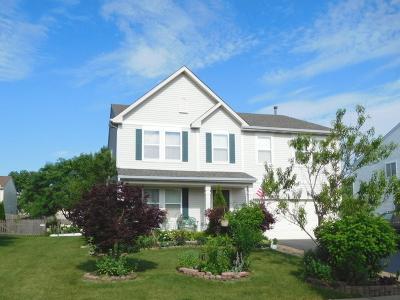 Plainfield Single Family Home For Sale: 14318 Jefferson Avenue