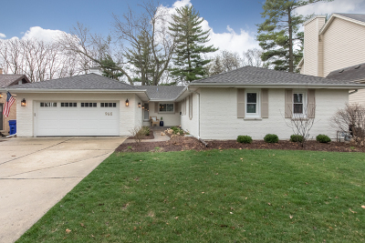 Glen Ellyn Single Family Home For Sale: 965 Oxford Road