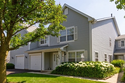 Mundelein Condo/Townhouse For Sale: 1220 Orleans Drive