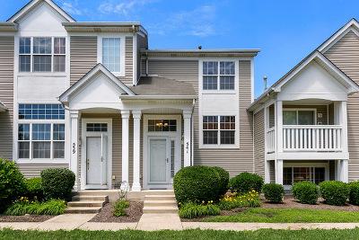 Joliet Condo/Townhouse For Sale: 541 Silver Leaf Drive #541