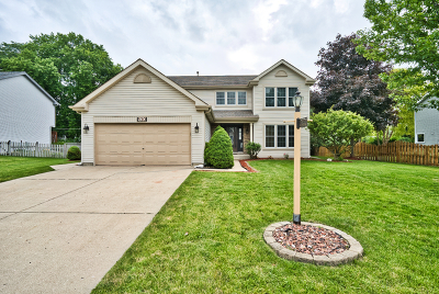 Wauconda Single Family Home For Sale: 520 Old Country Way