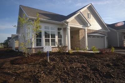 Woodstock Single Family Home For Sale: 2587 Verdi Street