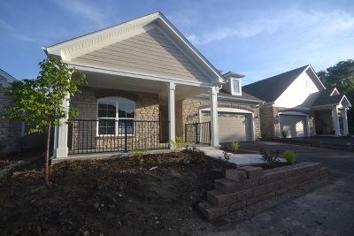 Woodstock Single Family Home For Sale: 2591 Verdi Street