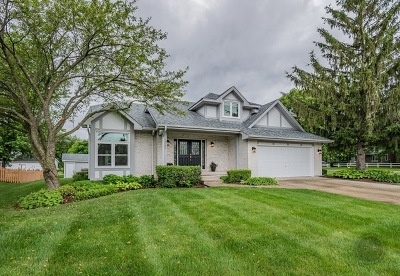 Plainfield Single Family Home For Sale: 15404 South Creekside Drive