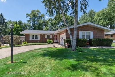 Batavia Single Family Home For Sale: 915 South Jackson Street