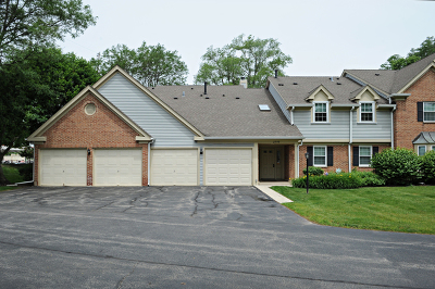Schaumburg Condo/Townhouse For Sale: 2790 Glasgow Court #W2