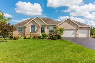 Ogle County Single Family Home For Sale: 9385 E. Hayrack Trail