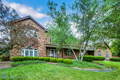 Orland Park Single Family Home For Sale: 15117 Grandview Drive