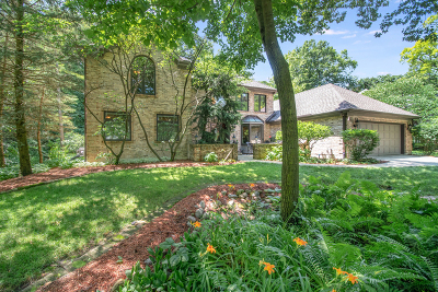 Wheaton Single Family Home For Sale: 379 West Arboretum Circle