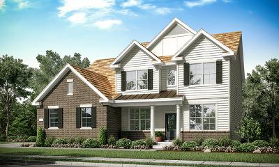 Libertyville Single Family Home For Sale: 1315 Vineyard Lane