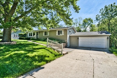 Lombard Single Family Home For Sale: 1017 South Ahrens Avenue