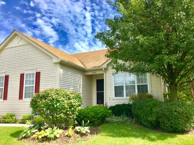Wauconda Single Family Home For Sale: 1246 Water Stone Circle