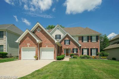 Westmont Single Family Home For Sale: 412 Kristin Street