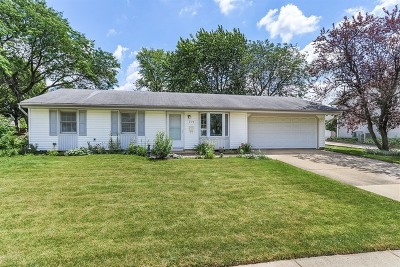 Schaumburg Single Family Home For Sale: 204 West Hartford Drive
