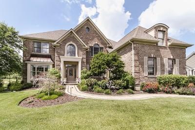Lakewood Single Family Home For Sale: 7045 Longmoor Drive