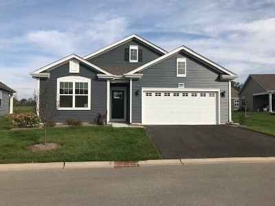 Pingree Grove Single Family Home For Sale: 2379 Cannon Drive