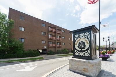 Elmwood Park Condo/Townhouse For Sale: 7610 West Grand Avenue #2E
