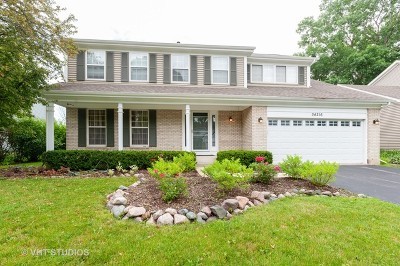 Grayslake Single Family Home For Sale: 34216 North Tangueray Drive
