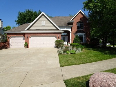 Orland Park Single Family Home For Sale: 14215 Camden Drive