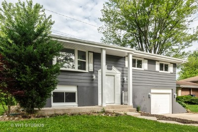 Lombard Single Family Home For Sale: 2s060 South Valley Road