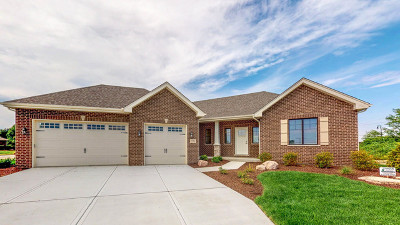 New Lenox Single Family Home For Sale: 571 Augusta Court