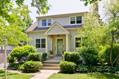 Lake Forest Single Family Home For Sale: 237 Noble Avenue