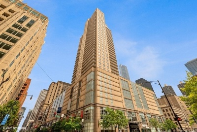 Condo/Townhouse For Sale: 545 North Dearborn Street #W1606