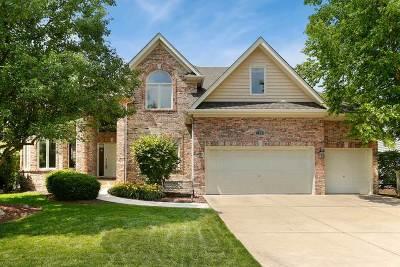 Aurora Single Family Home For Sale: 2890 Clarissa Lane