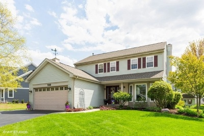 Barrington Single Family Home For Sale: 545 Chesterfield Lane