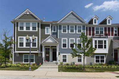 Schaumburg Condo/Townhouse For Sale: 116 Waterbury Circle