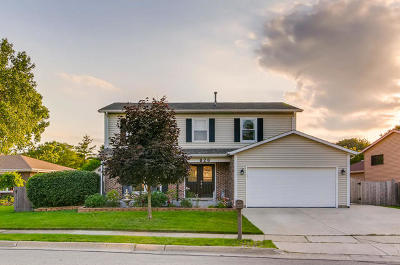 Carol Stream Single Family Home For Sale: 828 Niagara Street